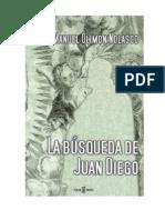 La Busqueda de Juan Diego