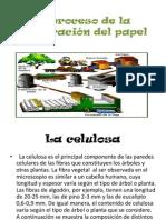 El proceso de la elaboración del papel