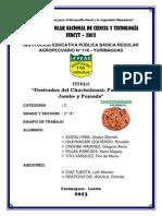 Derivados Del Chuchuhuasi Pastillas, Jarabe y Pomada
