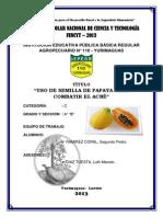 Uso de La Semilla de Papaya Para Combatir El Acne
