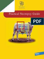 Elanco Necropsy Guide