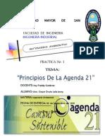 Agenda 21.docx