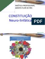 Constitución neuro-linfática