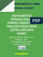 presentacion_biogas.pdf
