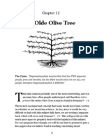 Romans 11 and the Olive Tree