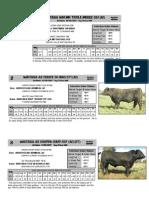 Production Sale catalogue 2009