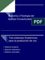 Anatomía y Fisiología del Aparato Fonoarticulador