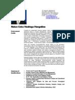 Ruben Mangaldan CV - 2009