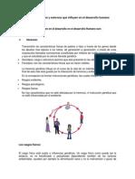 Factores Internos y Externos Que Influyen en El Desarrollo Humano