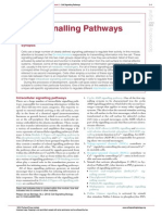 Cell Signalling Pathways