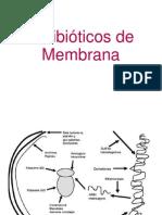 Antibioticos de Membrana Terapeutica