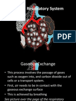Gaseous Exchange System