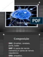 Sistema Nervoso 78M
