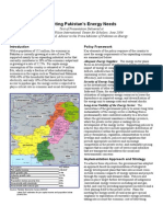 Meeting Pakistan's Energy Needs.pdf