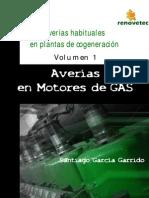 Averias en Motores de Gas[1]