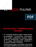 Expo Pat - Teorica Adultos 4412