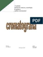 informe cromatografia.docx