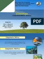 ecosistemaAAAA