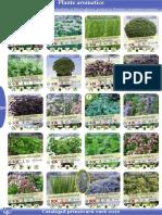 Aromatice Plant Shop.ro HQ