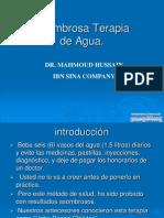 Fenelon Gimenez Gonzalez Asombrosa Terapia de Agua-4757