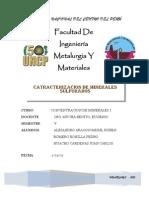Caracterizacion de Minerales Sulfurados