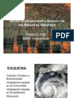 5.Sector Biodiversidad.pascal Girot.care