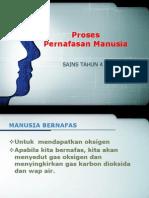 Proses Pernafasan S Y4