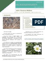 Boletin INSUMED - Julio Agosto_nº3-12