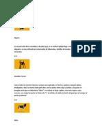 ABC de Razas de Perros