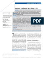 Microsurgical Anatomy of the Carotid Cave