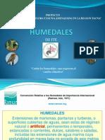 Humedal Ite CAR-Tacna20003
