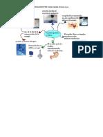 Mapa mental- Cambio químico y físico