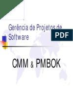 CMM&PMBOK