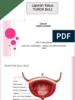 Lapsus Tumor Buli