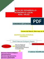 Dra. Diana Patricia Borrero