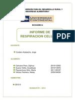 Informe de Respiracion Celular
