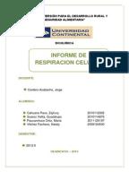 Informe botanica estomas for Botanica general pdf