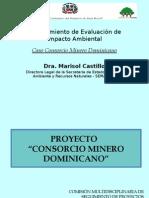 Proyecto Consorcio Minero Dominicano Unphu (Marisol Castillo)