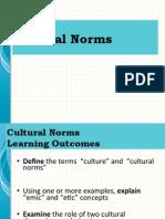 culture normspag2013