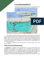 TEMA 2 Ciclos Biogeoquimicos