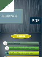 CELL SIGNALLING 2012.pdf