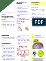 Leaflet Stroke Dara-zaras