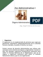 Órgano, Clases, Función, Organización, Estructura Orgánica