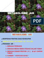 Metabolisme Air