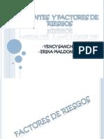 15405721 Agentes y Factores de Riesgos