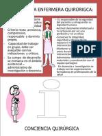 Perfil de La Enfermera 2010