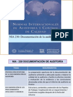 Auditoría NIA 230 Documentación Material de  clase Parte 3