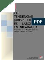 Informe Con Correcciones Sobre Tendencias Jurisprudenciales Nicaragua[1]-1