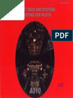 A310 Flight Deck Briefing