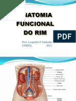 1. Anatomia Funcional Do Rim